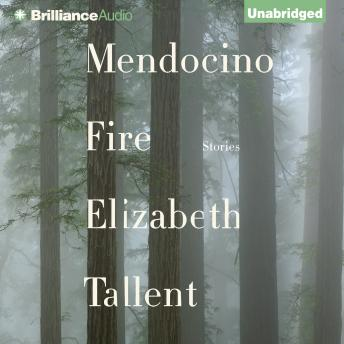Mendocino Fire: Stories, Elizabeth Tallent