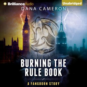 Burning the Rule Book sample.