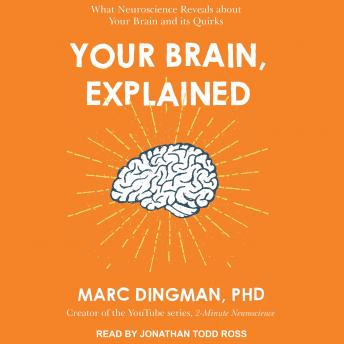 Download Your Brain, Explained: What Neuroscience Reveals About Your Brain and its Quirks by Marc Dingman