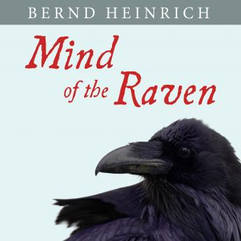 Mind of the Raven: Investigations and Adventures with Wolf-Birds sample.