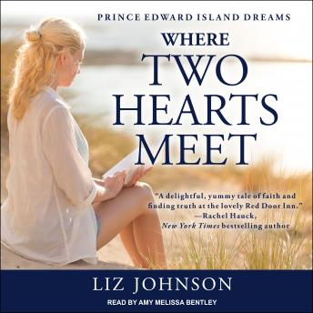 Download Where Two Hearts Meet by Liz Johnson