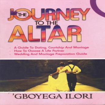 Download Journey to The Altar by Adegboyega Ilori