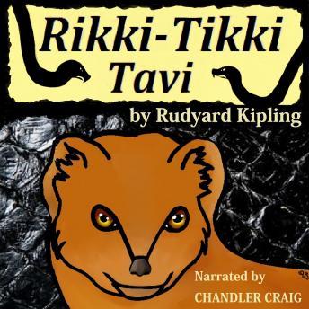 Rikki-Tikki Tavi