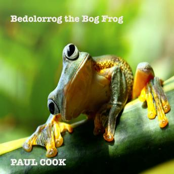 Bedolorrog the Bog Frog, Paul Cook