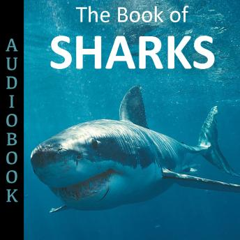 Book of Sharks