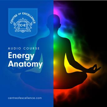 Download Energy Anatomy by Centre of Excellence, Centre Of Excellence