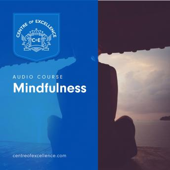Mindfulness, Centre of Excellence