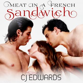 Meat in a French Sandwich