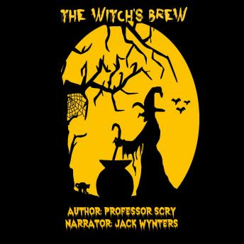 Download Witch's Brew by Professor Scry