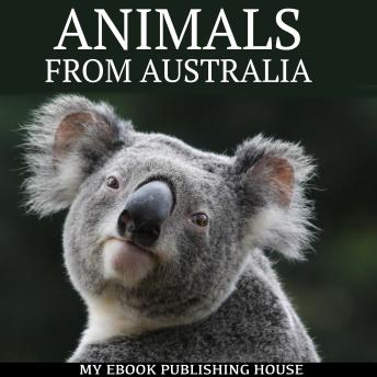 Animals from Australia