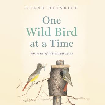 One Wild Bird at a Time: Portraits of Individual Lives, Bernd Heinrich