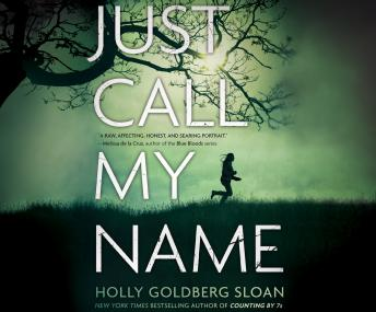 Just Call My Name, Holly Goldberg Sloan