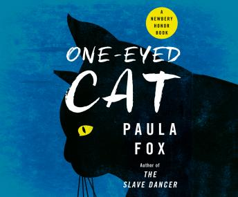 One Eyed Cat, Paula Fox