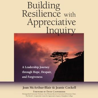 Building Resilience with Appreciative Inquiry : A Leadership Journey through Hope, Despair, and Forgiveness