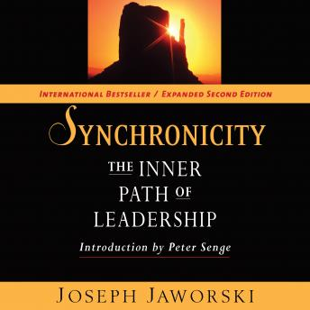 Synchronicity: The Inner Path of Leadership sample.