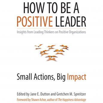 How to Be a Positive Leader: Small Actions, Big Impact, Kim Cameron, Robert Quinn, Adam Grant