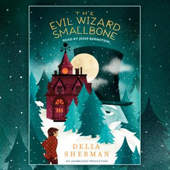 Evil Wizard Smallbone, Delia Sherman