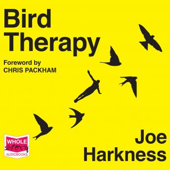 Bird Therapy, Joe Harkness