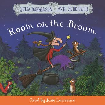 Room on the Broom: Book and CD Pack sample.