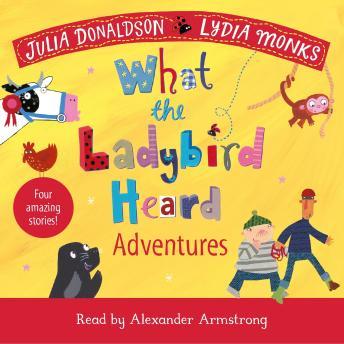 What the Ladybird Heard Adventures