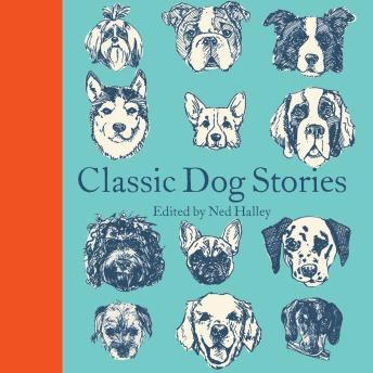 Classic Dog Stories details