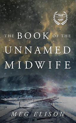 Book of the Unnamed Midwife, Meg Elison