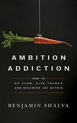 Ambition Addiction, Benjamin Shalva