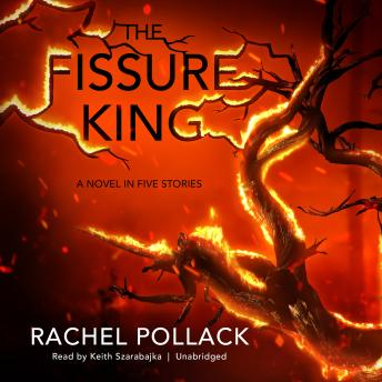 Fissure King: A Novel in Five Stories, Rachel Pollack