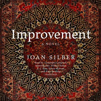 Improvement: A Novel