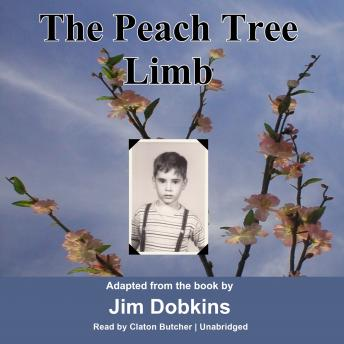 Peach Tree Limb, Jim Dobkins