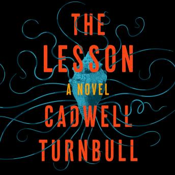 The Lesson: A Novel