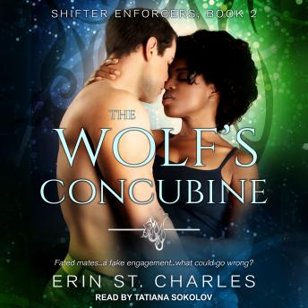 The Wolf's Concubine