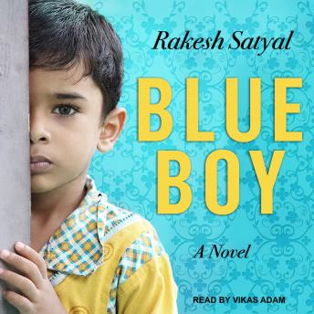 Blue Boy, Rakesh Satyal