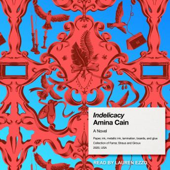 Indelicacy: A Novel, Amina Cain