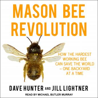 Mason Bee Revolution: How the Hardest Working Bee can Save the World - One Backyard at a Time, Jill Lightner, Dave Hunter