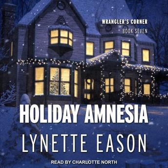 Download Holiday Amnesia by Lynette Eason