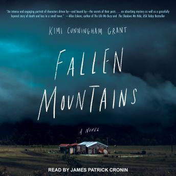 Fallen Mountains