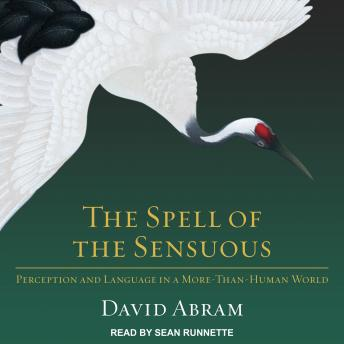 Spell of Sensuous: Perception and Language in a More-Than-Human World, David Abram