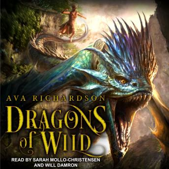 Dragons of Wild