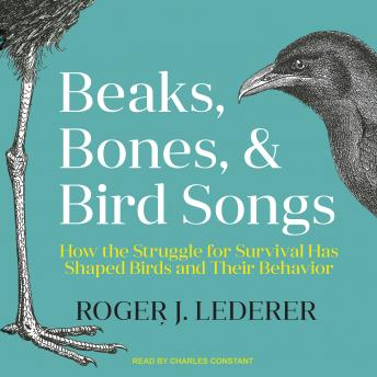 Beaks, Bones, and Bird Songs: How the Struggle for Survival Has Shaped Birds and Their Behavior