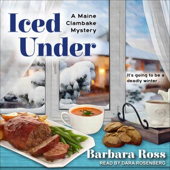 Iced Under, Barbara Ross