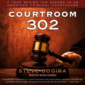 Download Courtroom 302: A Year Behind the Scenes in an American Criminal Courthouse by Steve Bogira