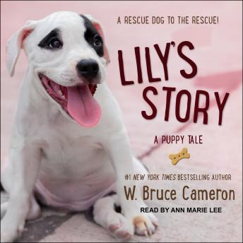 Lily's Story: A Puppy Tale, W. Bruce Cameron