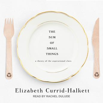 Sum of Small Things: A Theory of the Aspirational Class, Elizabeth Currid-Halkett