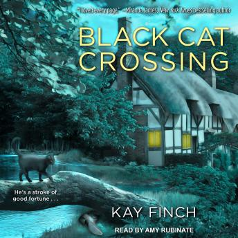 Black Cat Crossing, Kay Finch