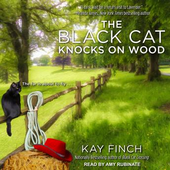 Black Cat Knocks on Wood, Kay Finch