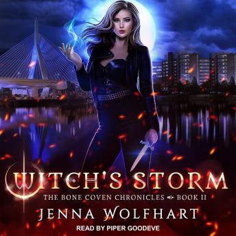Download Witch's Storm by Jenna Wolfhart