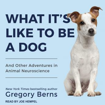 What It's Like to Be a Dog: And Other Adventures in Animal Neuroscience, Gregory Berns