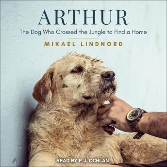 Download Arthur: The Dog Who Crossed the Jungle to Find a Home by Mikael Lindnord
