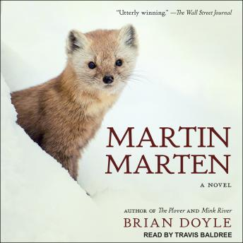 Martin Marten: A Novel, Brian Doyle
